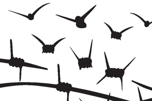 Istanbul10_De_Freiheit_web_wirebirds-590